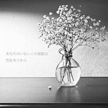 月夜に馳せる/GENIC プリ画像