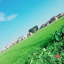 田舎の画像(プリ画像)