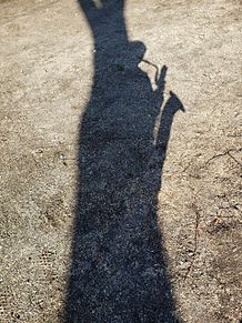 木陰に隠れるバリサク吹きの画像(サックスに関連した画像)
