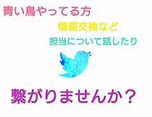 Blue Birdの画像(プリ画像)