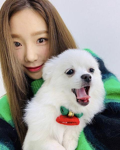 태연♡の画像 プリ画像