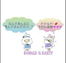 DONALD & DAIS