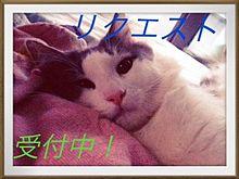 リクエストの画像(iPhone待ち受けに関連した画像)