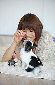高城亜樹ちゃん愛犬の画像(プリ画像)