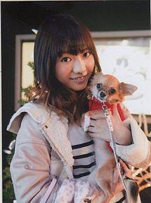 高城亜樹ちゃん愛犬あげるの画像(プリ画像)