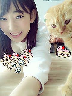 宮脇咲良ちゃん愛ネコの画像(プリ画像)