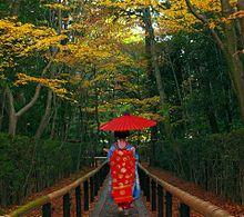 黄葉と舞妓 (マイコレ・保存はイイネ!)の画像(プリ画像)
