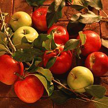 紅い林檎  黄色い林檎 (マイコレ・保存はイイネ!)の画像(プリ画像)