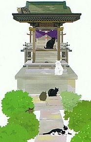 猫の集会所  (マイコレはポチ押す)の画像(プリ画像)
