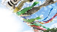 青空に鯉のぼり  (マイコレはポチ押す)の画像(プリ画像)