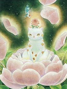 蓮華と猫  (マイコレはポチ押す)の画像(プリ画像)