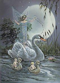 白鳥と妖精  (マイコレはポチ押す)の画像(プリ画像)