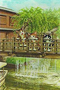 ジャージャー橋 (マイコレはポチ押す)の画像(プリ画像)