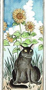 黒猫と向日葵  (マイコレはポチ押す)の画像(プリ画像)