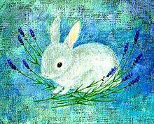 ウサギとラベンダー  (マイコレはポチ押す) プリ画像