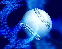 ソフトボール ⚾ 野球ボール 球技 部活 スポーツの画像(スポーツに関連した画像)