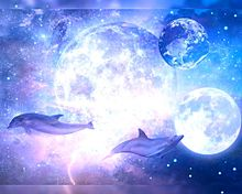 幻想ファンタジー  幻想的  イルカ🐬の画像(宇宙柄に関連した画像)