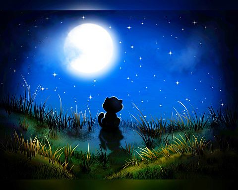 ファンタジー  メルヘン  お月見の画像(プリ画像)