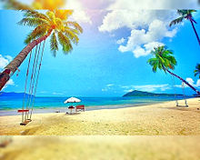 夏  海  ビーチ  ヤシの木  砂浜の画像(ヤシの木?に関連した画像)