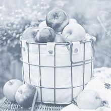 林檎  りんご  リンゴ  アップルの画像(りんごに関連した画像)