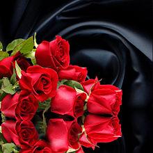 薔薇🌹  バラ  ローズ  花束 プリ画像