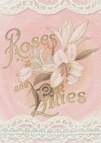 Roses & Lilies   (説明文 必読)の画像(プリ画像)