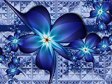 blue   flower   (説明文 必読)の画像(プリ画像)