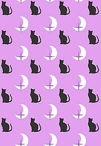 ⛔マナー違反禁止*三日月と黒猫   (説明文 必読)の画像(プリ画像)