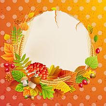 フレーム*秋の植物 (無透過)  (説明文 必読)の画像(プリ画像)