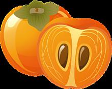 スタンプ*秋の果物*柿 (背景透過)  (説明文 必読)の画像(プリ画像)