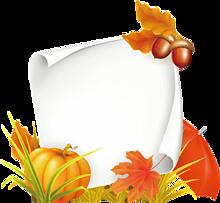 フレーム*秋の植物 (背景透過)   (説明文 必読)の画像(プリ画像)
