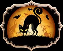 アイコン*黒猫 (背景透過)   (説明文 必読)の画像(プリ画像)