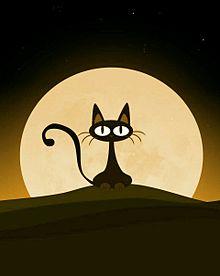 満月に黒猫   (説明文 必読)の画像(プリ画像)