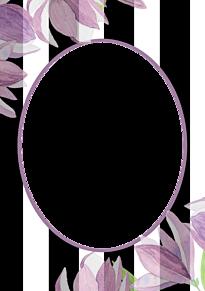 フレーム*ストライプに花(部分透過) (説明文 必読)の画像(プリ画像)