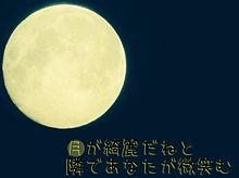 花鳥風月の画像(藤崎彩織に関連した画像)