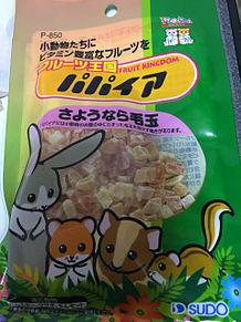 ドライフルーツ パパイヤ 毛玉予防 小動物の画像(ドライフルーツに関連した画像)