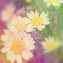 うたい去りし花