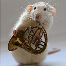 ホルン ハムスター 原画 リクエストの画像(金管楽器に関連した画像)