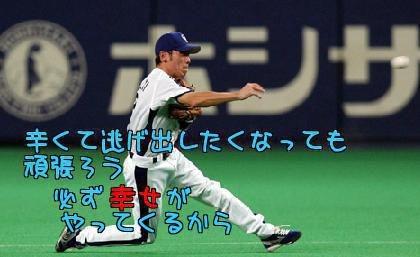 荒木雅博の画像 p1_10