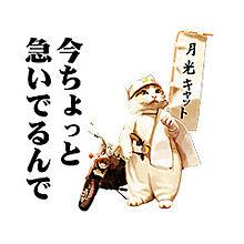 なめ猫スタンプの画像(プリ画像)