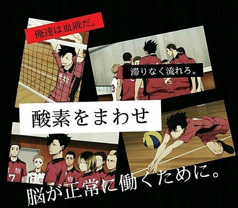 音駒高校 黒尾 名言の画像(プリ画像)