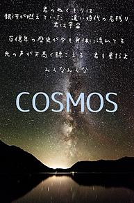 COSMOSの画像(合唱コンクールに関連した画像)