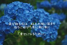 あさき/幸せを謳う詩の画像(一眼レフに関連した画像)