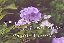 あさき/愛のかたち幸せのかたちの画像(一眼レフに関連した画像)