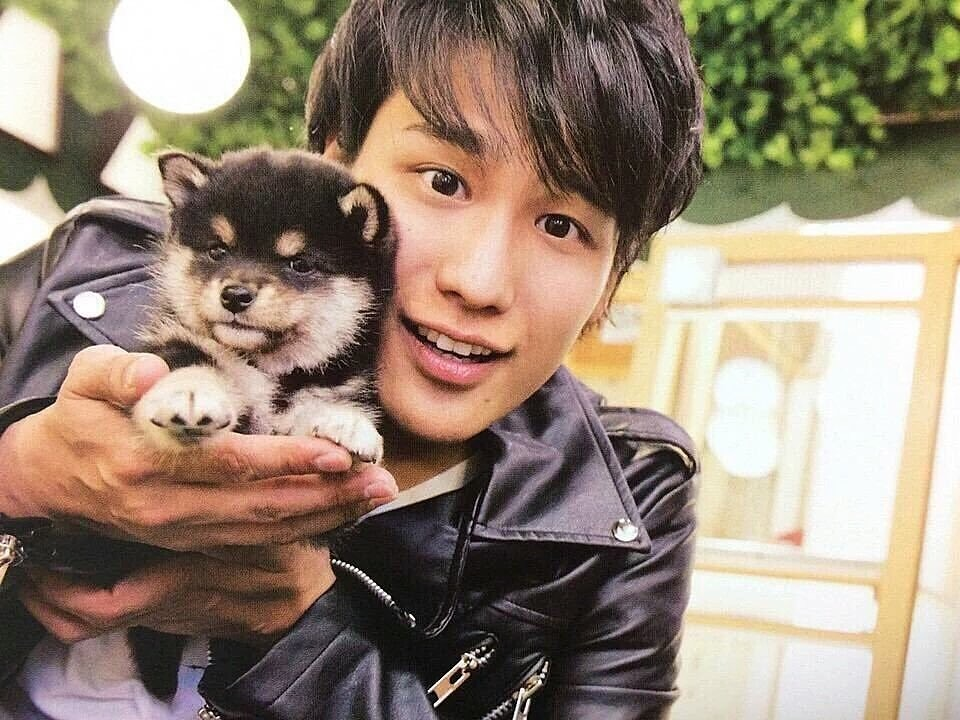 犬と桐山照史