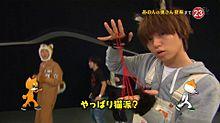志村どうぶつ園の画像(プリ画像)