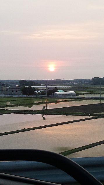朝陽の画像(プリ画像)
