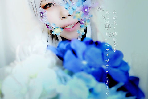 花咲病×刀剣男士の画像(プリ画像)