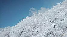 雪景色   背景などにどぞ!!!😉の画像(プリ画像)