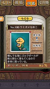 ウミガメ チーノ